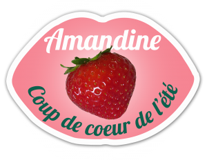 Sticker Amandine PLANASA